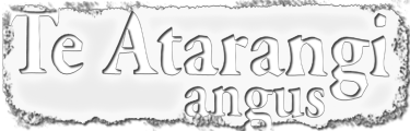 Te Atarangi Logo White - 2018 WEB